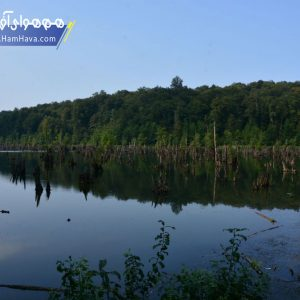 دریاچه ارواح یا دریاچه ممرز (به انگلیسی: Mamraz lake) در ۳۲ کیلومتری شهر نوشهر و در نزدیکی روستای ونوش قرار گرفتهاست.
