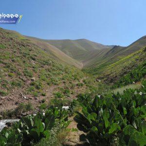 این قله 3270 ارتفاع دارد